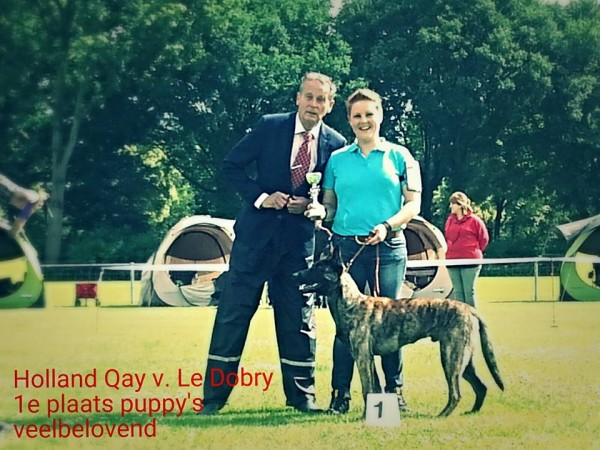 Qay-NHC-beste-pup
